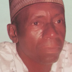 Ali Ibrahim Isa S